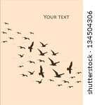 silhouettes of flying birds ...   Shutterstock .eps vector #134504306