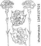 line drawings of carnation...   Shutterstock .eps vector #1345157525