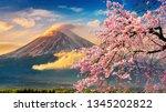 Fuji Mountain And Cherry...