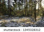 last snow on the ground in the... | Shutterstock . vector #1345328312