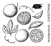 passion fruit vector drawing... | Shutterstock .eps vector #1345579448