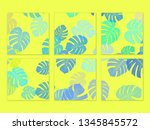 monstera color frame on wall... | Shutterstock . vector #1345845572