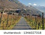 liechtenstein  vaduz   january... | Shutterstock . vector #1346027318