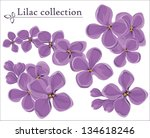Lilac Vector Collection. ...