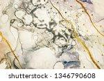 exotic art. golden swirl ... | Shutterstock . vector #1346790608