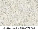 soft fleece shaggy pelt | Shutterstock . vector #1346877248