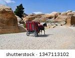 Jordan  Horse Carriage In Bab...