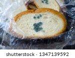 mouldy bread  penicillium... | Shutterstock . vector #1347139592