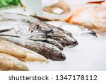 fresh fish at a fishmonger | Shutterstock . vector #1347178112