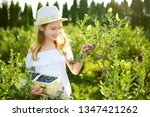 cute little girl picking fresh... | Shutterstock . vector #1347421262