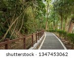 small road by trees with nobody ... | Shutterstock . vector #1347453062