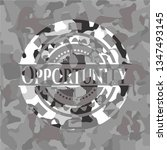 opportunity on grey camouflage... | Shutterstock .eps vector #1347493145