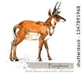 ice age wildlife. prehistoric... | Shutterstock . vector #1347891968