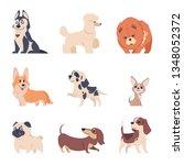 cartoon dogs. retriever...   Shutterstock .eps vector #1348052372