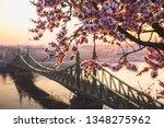 Beautiful Liberty Bridge At...
