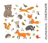 Set Of Cute Forest Animals ...