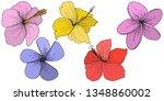 vector hibiscus floral tropical ... | Shutterstock .eps vector #1348860002