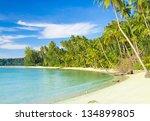 serenity shore palm panorama | Shutterstock . vector #134899805