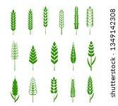 set of simple wheats ears green ... | Shutterstock .eps vector #1349142308