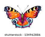 watercolor butterfly | Shutterstock . vector #134962886