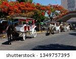 guadalajara  jalisco mexico  ...   Shutterstock . vector #1349757395