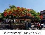 guadalajara  jalisco mexico  ...   Shutterstock . vector #1349757398