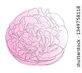 vector illustration of pink... | Shutterstock .eps vector #1349758118