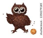 creative concept photo of owl...   Shutterstock . vector #1350279185