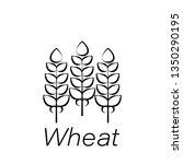 wheat hand draw icon. element...
