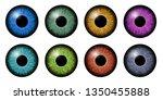 different eyes iris macro... | Shutterstock . vector #1350455888