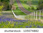 Bluebonnets And Yellow...
