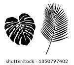 tropical plant leaf icon set   Shutterstock .eps vector #1350797402