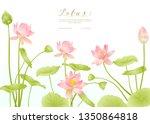 lotus flowers.  template for... | Shutterstock .eps vector #1350864818