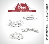 beans. hand drawn collection of ... | Shutterstock .eps vector #1351243085