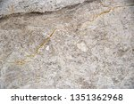 white marble patterned texture... | Shutterstock . vector #1351362968
