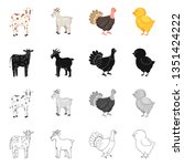 vector illustration of breeding ... | Shutterstock .eps vector #1351424222