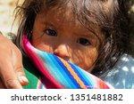 potos   department of potos   ... | Shutterstock . vector #1351481882