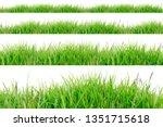 green grass border isolated on... | Shutterstock . vector #1351715618