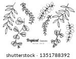 collection set of tropical... | Shutterstock .eps vector #1351788392