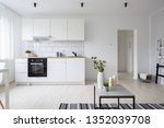 Small photo of Modern and stylish studio apartment in white with functional kitchenette