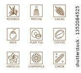 vector set of herbal organic... | Shutterstock .eps vector #1352084525