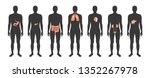 vector isolated illustration... | Shutterstock .eps vector #1352267978