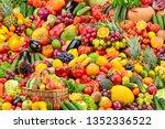 big collage fresh tasty... | Shutterstock . vector #1352336522