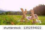sun flare  close up  dof ... | Shutterstock . vector #1352554022