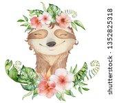 watercolor slothbears cute... | Shutterstock . vector #1352825318