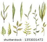 watercolor leaves. botanical... | Shutterstock . vector #1353031472