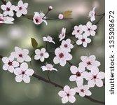 branch almond with flower | Shutterstock .eps vector #135308672