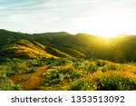 california super bloom | Shutterstock . vector #1353513092