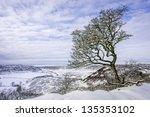 Goathland  Yorkshire  Uk. A...