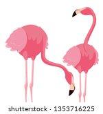 elegant flamingo birds couple | Shutterstock .eps vector #1353716225